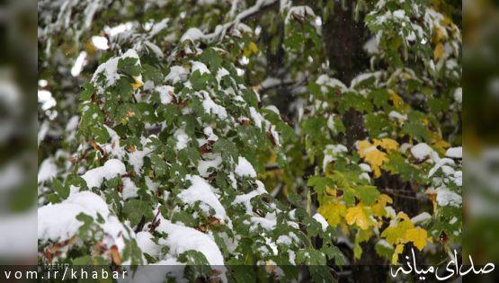 اردبیل سردترین استان کشور/دمای هوای ۷ استان به زیر صفر رفت