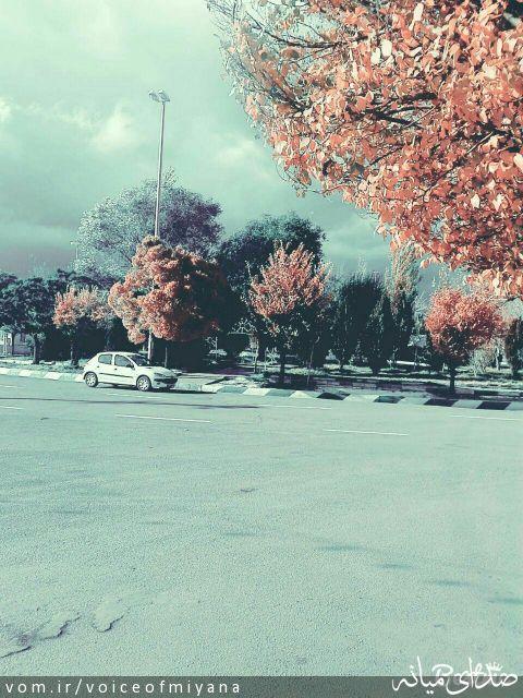 پاییز در ترکمانچای از نگاهی دیگر +تصاویر