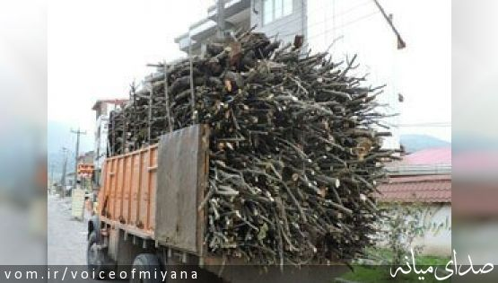 توقیف ۳ کامیون حامل ۴۷ تن چوب قاچاق در میانه