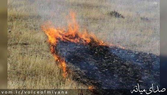 ۲۰ هکتار از اراضی شهرستان میانه در آتش سوخت