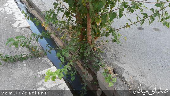 شهر هرت - قسمت دوم