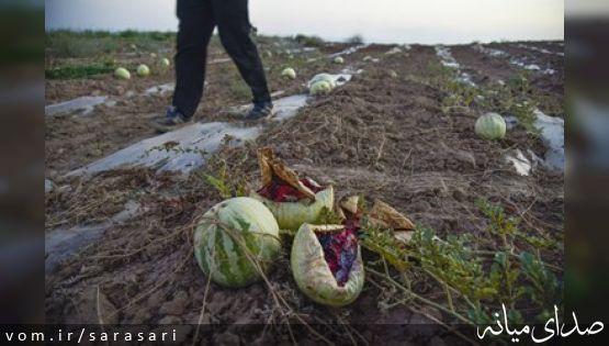 رَجِعین روستای هندوانه ایران ، درگیرِ چالش بزرگ +تصاویر