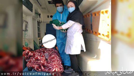 تولد نوزاد عجول در آمبولانس تَرک